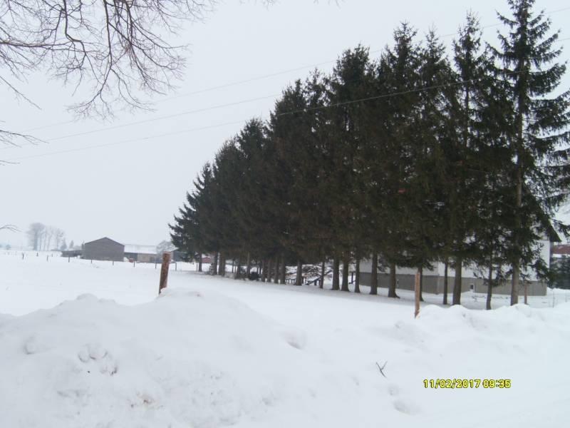 Zdjęcie w mojabudowa.pl - haniapawel - s7300857.jpg